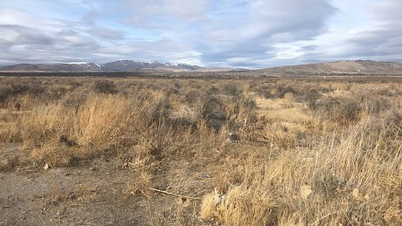 Lemmon Valley land formerly flooded could be the site of warehouses and homes