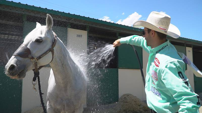 Shane Hanchey, who entered the Reno Rodeo as the #1 ranked tie-down roper in the world, was...