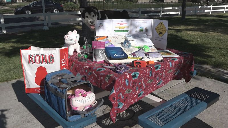 A local pet expert urges families to have an emergency plan during wildfire season.
