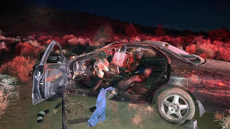 Two people were injured, and two horses died following a crash in Sparks Sunday evening.