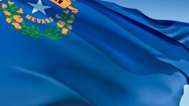 Nevada Day Flag
