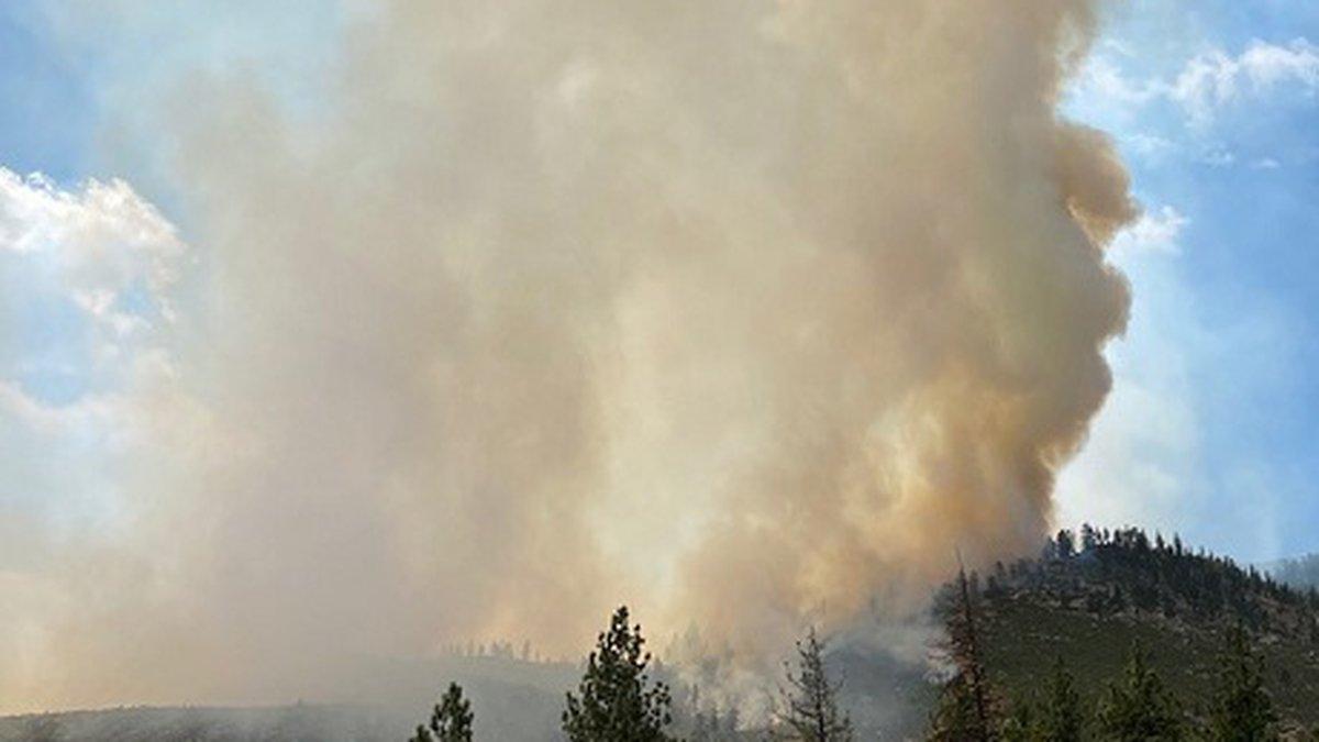 Tamarack Fire burns in rugged area above Highway 88 near Woodfords California