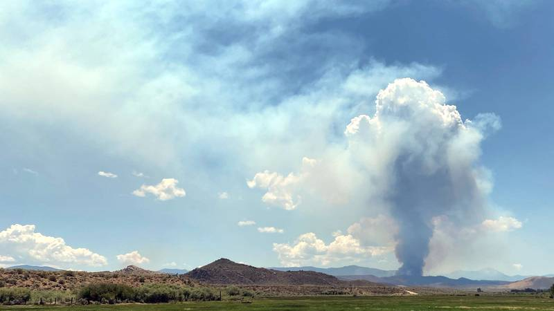 A photo of the East Fork Fire on July 2, 2021.