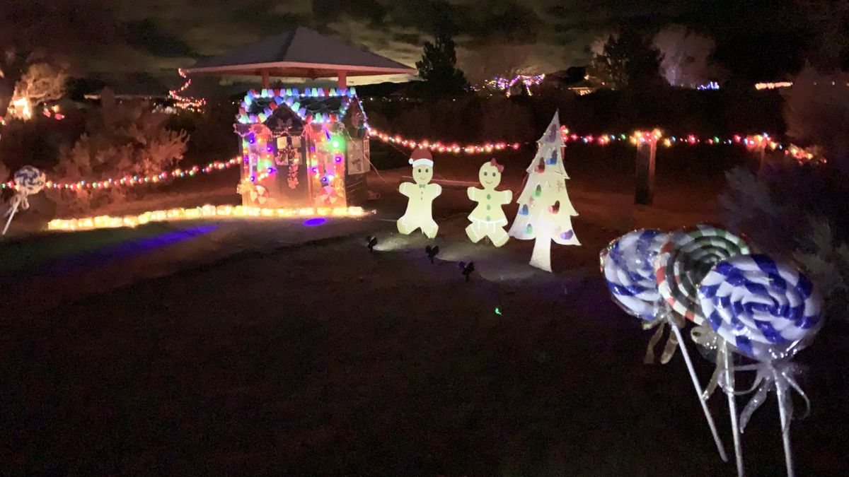 One of the light displays featured at Washoe Lake State Park's Trail of Lights.