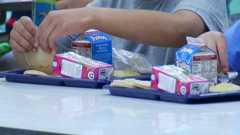 Some schools facing lunch shortages due to pandemic pause