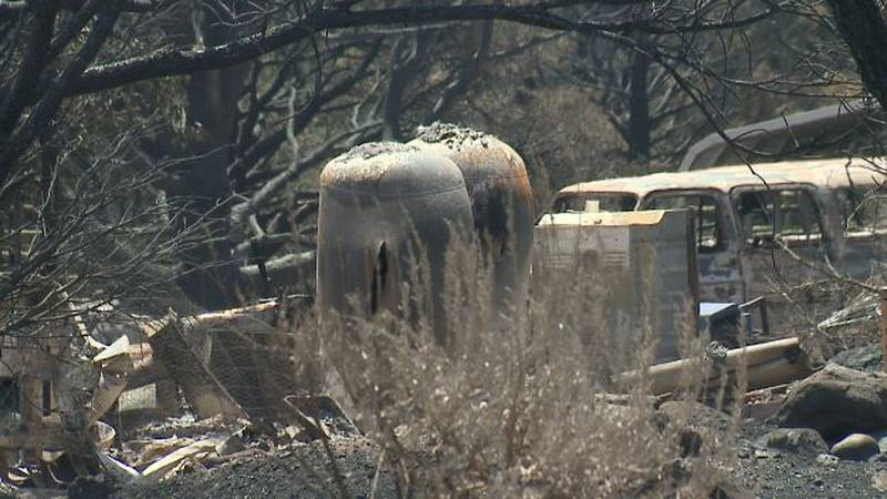 Focusing on mental health recovery for those impacted by the Tamarack fire