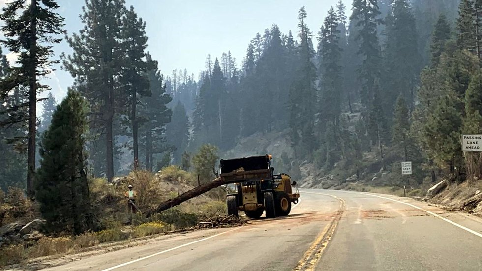 Crews remove a hazardous tree caused by the Caldor Fire.