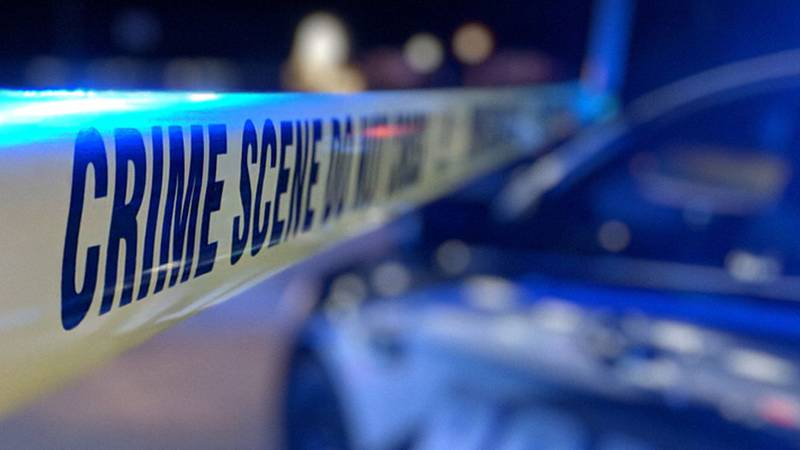Homicides rose sharply from 2019 to 2020.