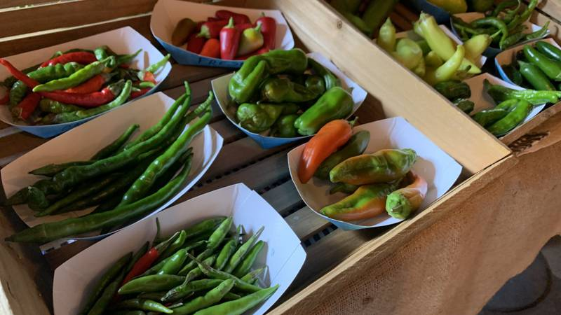 Bartenders met with area farmers to discuss how they can infuse local ingredients into their...