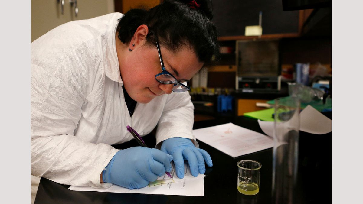 Cassie Hurwitz works in a biology lab at Western Nevada College during the Spring 2019