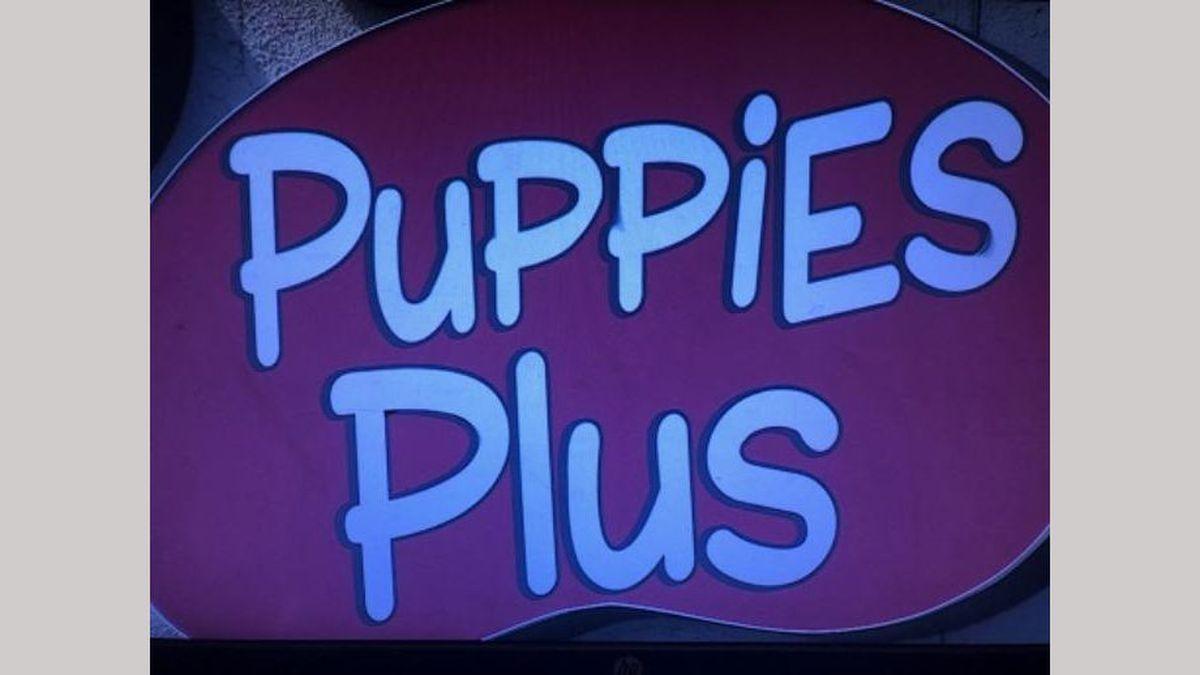 Puppies Plus.