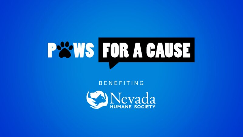 Paws for a Cause virtual fundraiser