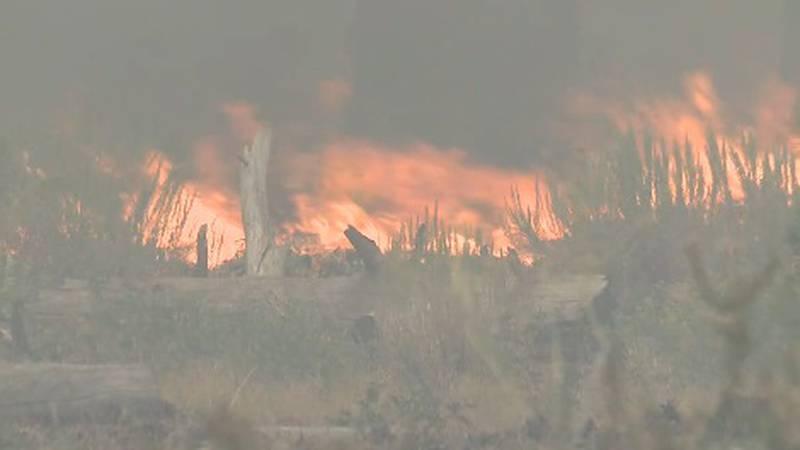 Fire crews fight the Caldor Fire.
