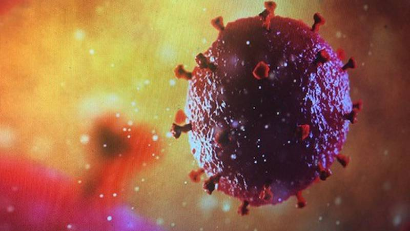The HIV virus.