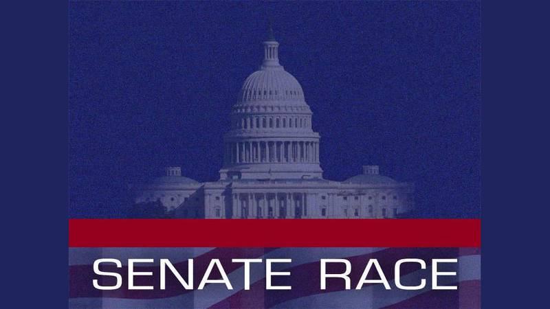 Senate Race graphic