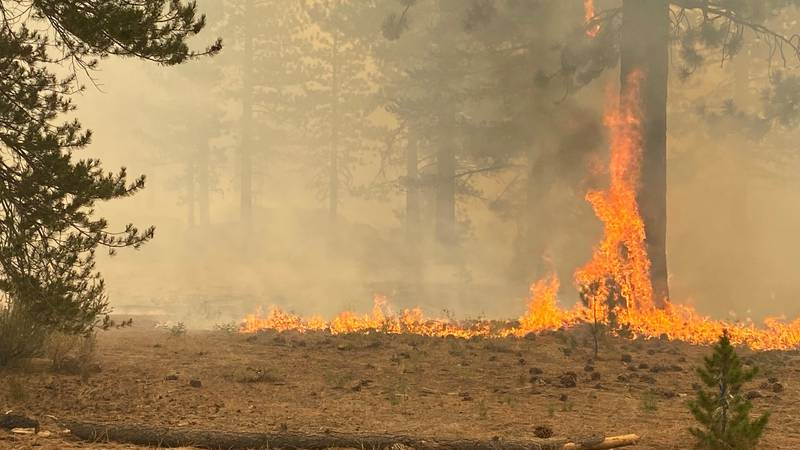 The Caldor Fire burnS between Meyers and Christmas Valley on Tuesday, Aug. 31, 2021.