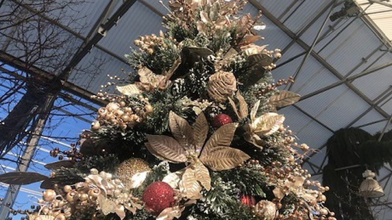 """Decorated evergreen up for bid at the """"Festival of Trees"""""""
